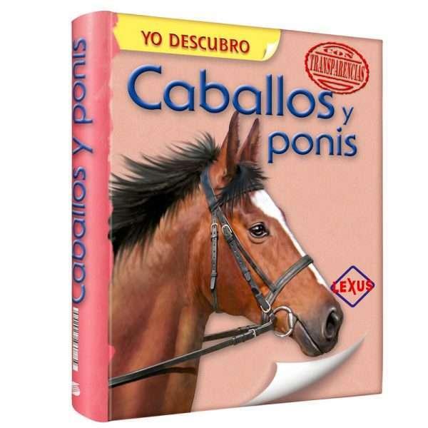 caballos ponis SUYDC1